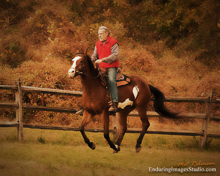 Horse photographer, equestrian photographer, Rockaway, Morris County